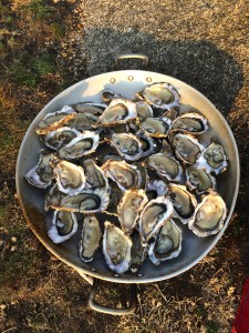 Ile d'yeu - Oysters dinner!