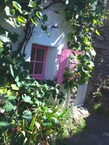 Ile d'Yeu - pink window